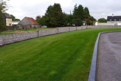 greenhand-lawn-treatment-018