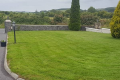 greenhand-lawn-treatment-CASE-STUDY-After-first-cut-016