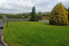 greenhand-lawn-treatment-CASE-STUDY-After-first-treatment-Ready-to-be-cut-034
