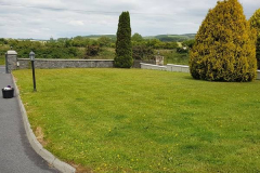 greenhand-lawn-treatment-CASE-STUDY-Before-treatment-033
