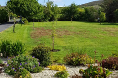 greenhand-lawn-treatment-Over-enthusiastic-DIY-lawn-treatment-009